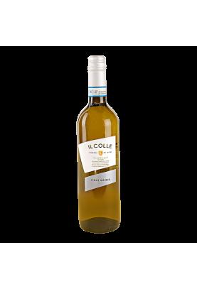 Pinot Grigio / Il Colle